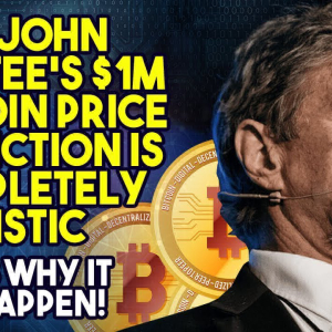 John McAfee Still Confident About $1 Million Bitcoin Prediction, Even After Drastic Fall