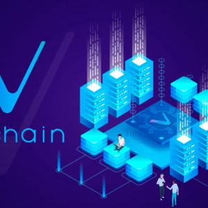 """A Detailed Review of Blockchain Firm """"VeChain"""" & Its Core Functionalities"""