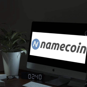 Introduction to Namecoin : A Blockchain Protocol that Functions as a Naming System