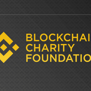 Horizon State Pledges 5% of Revenue to Binance Charity for Transparent Distribution of Funds