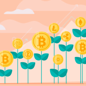 Investing in Bitcoin or Altcoins – Which One will Give You More Returns?