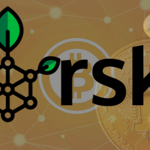 Accelerators, Social Medias, Investments: What RSK's Global Moves Mean For Bitcoin's Adoption