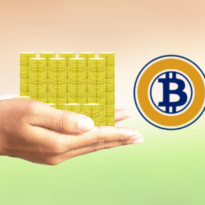 How can you purchase Gift cards with Bitcoin Gold?