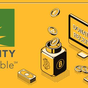 Fidelity Charitable Received $106 Million Donation Despite the Economic Uncertainty