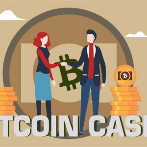 Bitcoin Cash (BCH) Crashes Hard; Trades at the Lowest in Fortnight