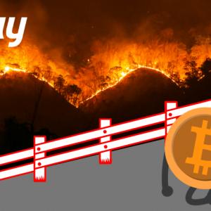 Amazon Watch: BitPay's Donation of $100,000 Bitcoin Failed Due to Internal Checks!