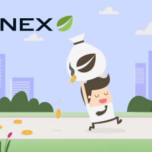 Bitfinex Raised $5 Million In Its First IEO For Ampleforth In A Mindboggling 11 Seconds