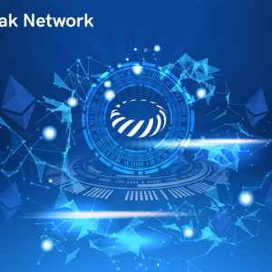 Tokamak Network On-demand Platform to ease building decentralised apps for organisations