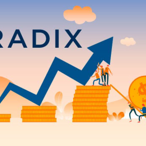 UK Startup Radix Shapes a New Future for DeFi