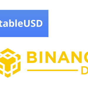 StableUSD Gets Listed On Binance DEX