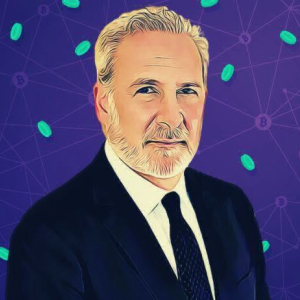 Bitcoin Pumpers Forced to Admit It's Not Digital Gold – Peter Schiff