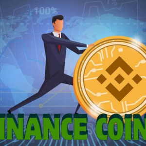 Binance Coin Starts the Week from Bottom as Previous Week Saw Bears Coming in