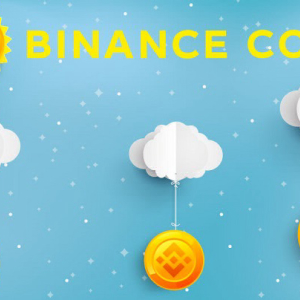 Binance Coin (BNB) Faces Rejection Above $21; Gears Up for a Rebound