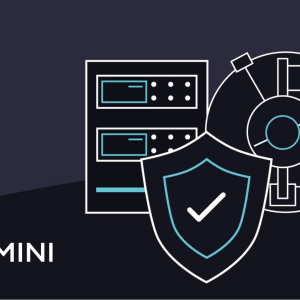 Crypto Exchange Gemini Launches Regulated Custody Services