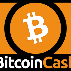 Is 'Calling it Quits' a New Trend Among Lead Developers? This Time it is Amaury Séchet of Bitcoin Cash (BCH)