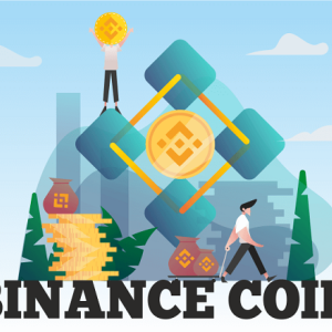 Binance Coin Price Face with a Slight Plunge; Coin Deal at $22