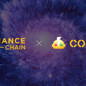 Crypto Exchange Coineal Announces Collaboration with Binance, To Develop Binance Chain