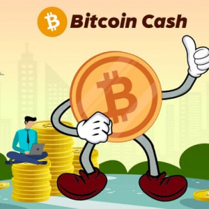 Bitcoin Cash Trades Above $300 But Holds Bearish Divergence