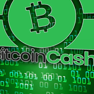 Bitcoin Cash (BCH) Price Analysis : Bitcoin Cash's Market on an Unvarying Surge