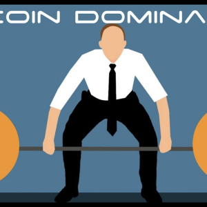 New Research Reveals that Bitcoin's (BTC) Market Dominance is over 80%