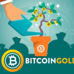 Bitcoin Gold (BTG) Price Analysis: BTG Price Shoots Up Despite a Few Plunges