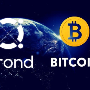 Bitcoin and ERC20 Assets Now on Elrond Via Poly Network