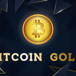 Bitcoin Gold Maintains the Bull Trend Amidst Pale Trading Scenario of the Market