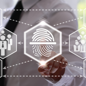Blockchain Ledger Technology Based Digital IDs: The Future for a Securer Virtual Privacy