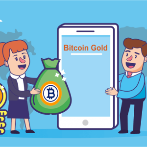Bitcoin Gold Price Analysis: Growth is Stable, Invest in the Crypto for Long Term Return