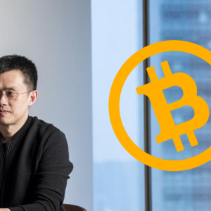 Binance CEO Warns About Bitcoin and Crypto, Says Lack of Institutional Adoption A Worry