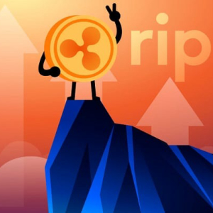 XRP Bulls Remain Above $0.22 Despite Corrections