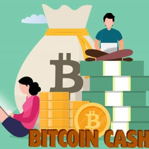 Bitcoin Cash Tests All Major Supports and Is Dipping Even Below; Trades at $264