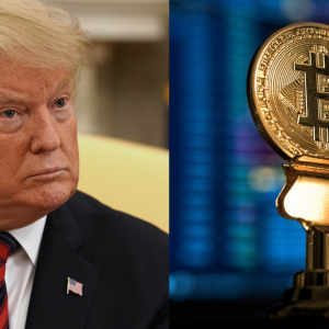 Big Guns of Crypto Fraternity React to Trump's Tweets on Bitcoin and Other Cryptocurrencies