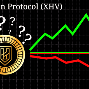 Haven Protocol (XHV) most likely to be disbanded