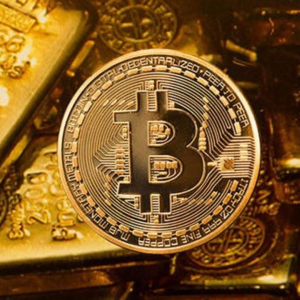 Bitcoin Gold (BTG) Price Analysis : Review on Bitcoin's Hard Fork – Bitcoin Gold's Enhancing Market Trend