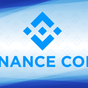 Binance Coin Price on a Continual Downswing; Holds a Strong Bearish Outlook