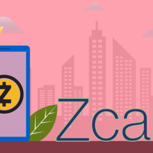 Zcash Price Gets Drenched in Blood Due to the Market Pressure