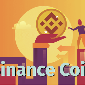 Binance Coin Price Analysis: Binance Coin (BNB) Price Drenched in Blood; Huge Setback for the Traders