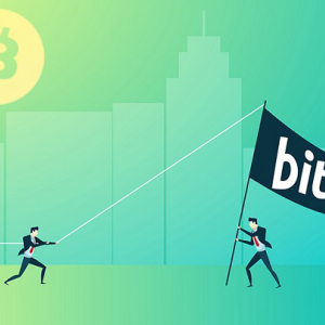 Bitcoin Price Analysis: Amidst Zig-zag Movements Bitcoin (BTC) Confirms a Possible Price Rally