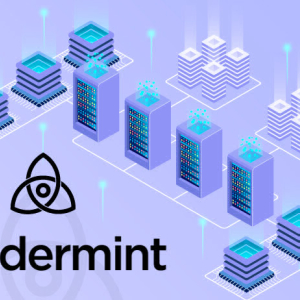 Tendermint: Powering the Next Wave of Blockchain Expansion