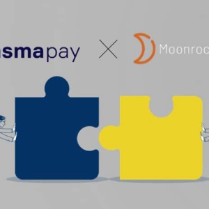 PlasmaPay Partners with Moonrock Capital To Expand DeFi Cluster