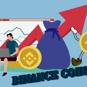 Binance Coin Price Analysis: Binance Coin (BNB) Shows 422% Growth From The Start Of 2019 Until Now