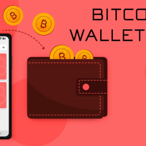 What Are the Different Methods of Developing a Bitcoin Wallet App?