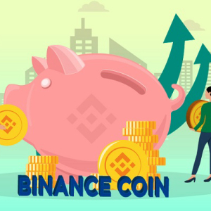 Binance Coin Gradually Corrects After Today's Bullish Price Actions