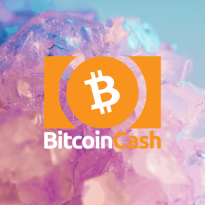Bitcoin Cash price falls to $313