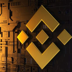 Binance Coin BNB price traces path above baseline of $19.8