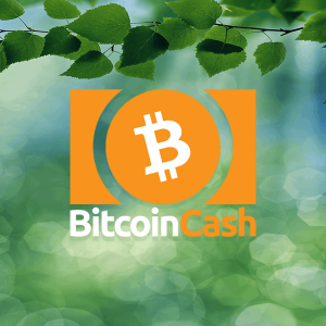 Bitcoin Cash price retraces towards $352