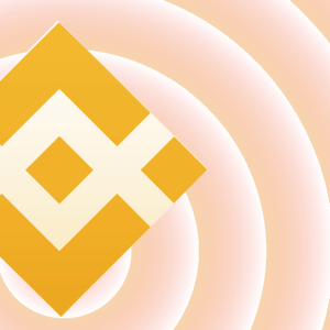 Binance Coin BNB price: picks up by 0.19%