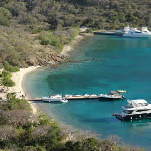 British Virgin Islands and LIFElabs join hands to launch a digital currency