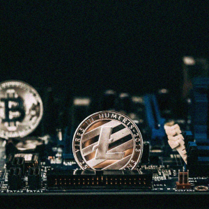 Litecoin price likely to stay below $100 this year?